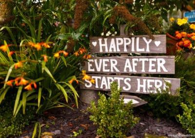 spring-wellbeing-farm-weddings00018