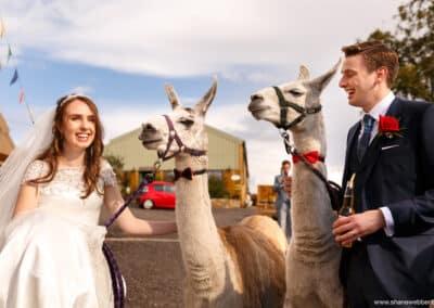 spring-wellbeing-farm-weddings00039