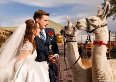 spring-wellbeing-farm-weddings00040