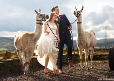 spring-wellbeing-farm-weddings00045