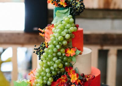 wedding-feast-fizz-wellbeing-farm00022