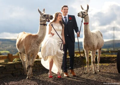 weddings-at-the-wellbeing-farm00057