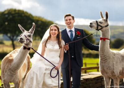 weddings-at-the-wellbeing-farm00058