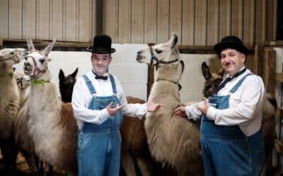 Why did we choose Llamas?