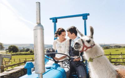 DIY Wedding story: Helen and Daniel