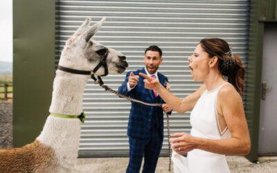 Summer Wedding Story: Jules & Andrew